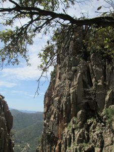 roccia cannisoni