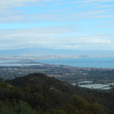 Sabato 16 Febbraio – Poggio dei Pini e i monti di Capoterra in MTB