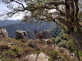 Domenica 17 Novembre 2019 – Punta Sebera – Gola Calamixi